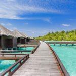 Sheraton Maldives Full Moon Resort & Spa  Bungalov Okyanus Manzaralı - Su Üstünde